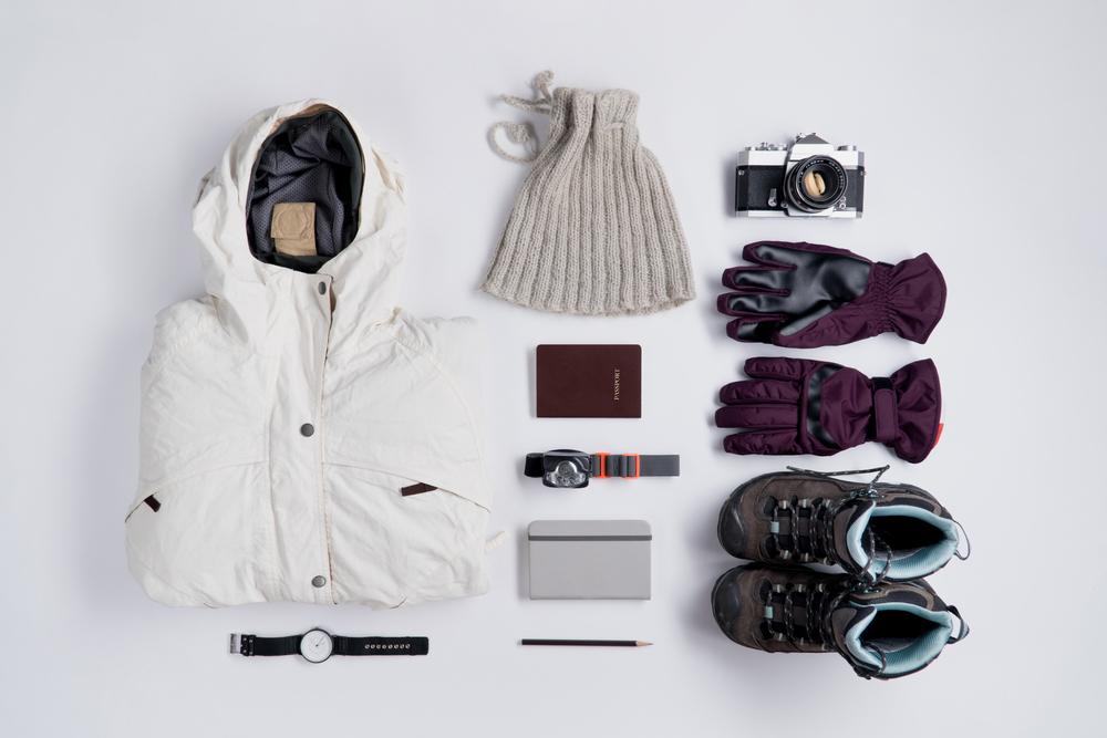 クルーズ旅行 南極